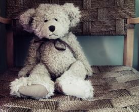 bear__6179726305