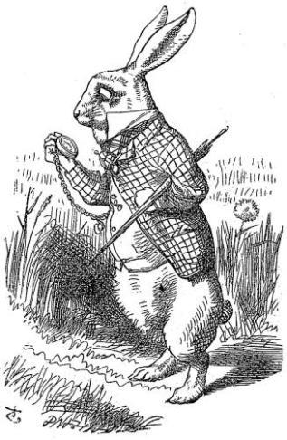 01 The White Rabbit